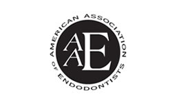 American Association of Endodontics